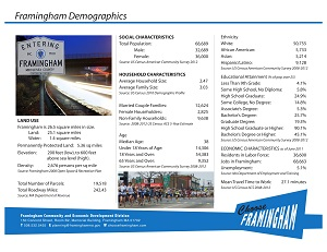image of a Fact Sheet on the demographics in Framingham